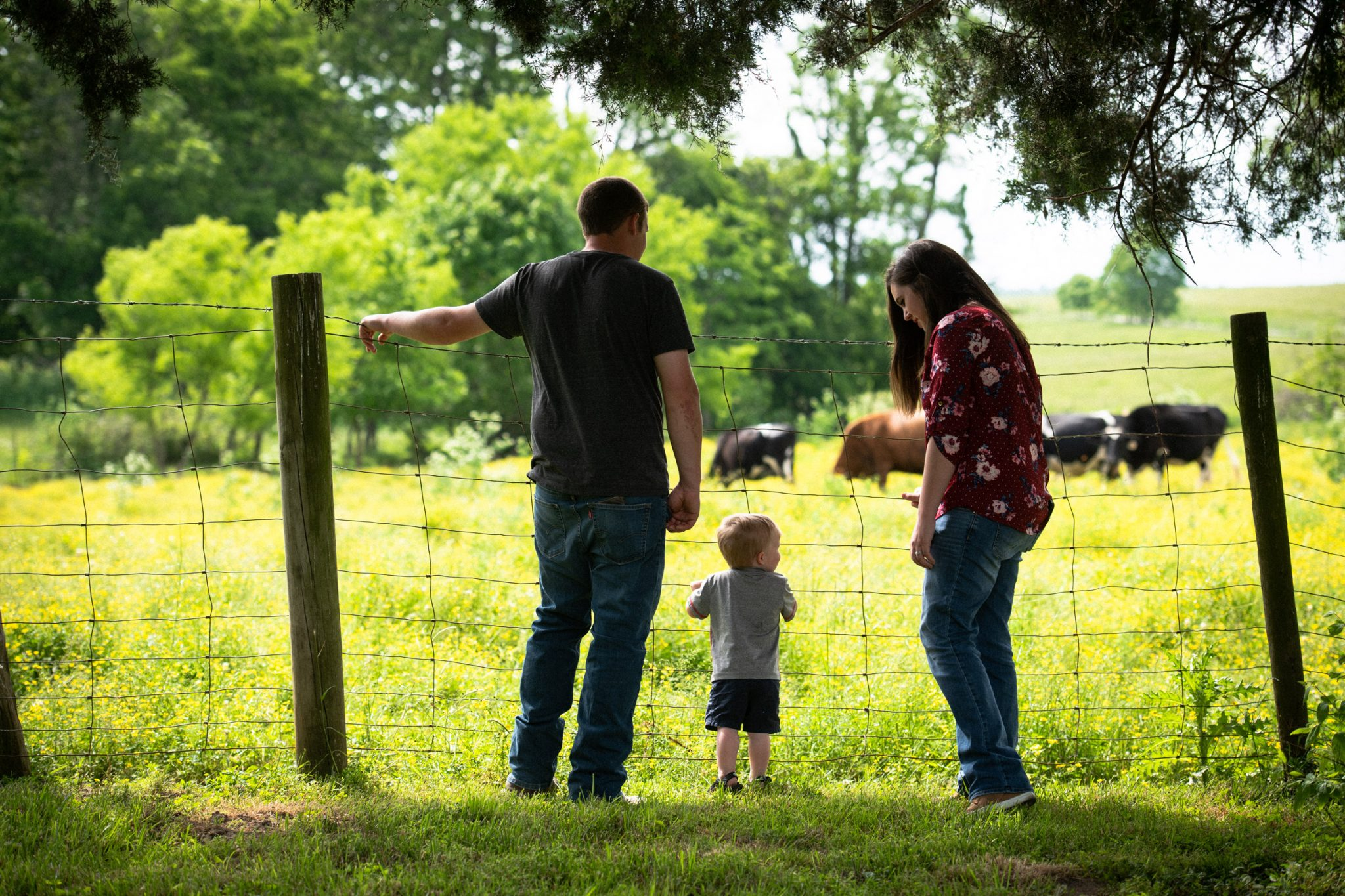 Caleb and Amelia show their son Cason some cows grazing in a pasture on their farm.