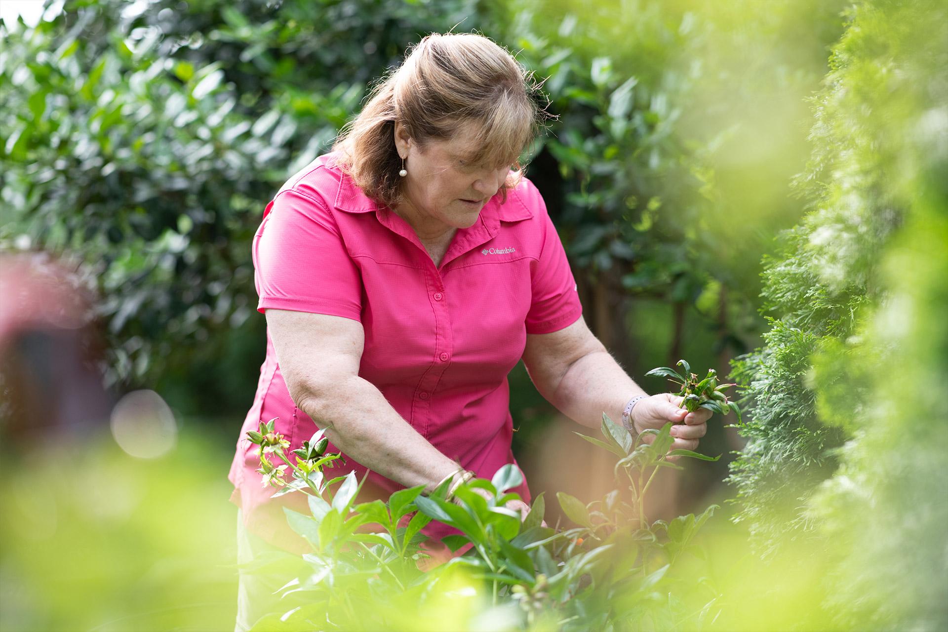 Suzanne prunes a bush in her garden.