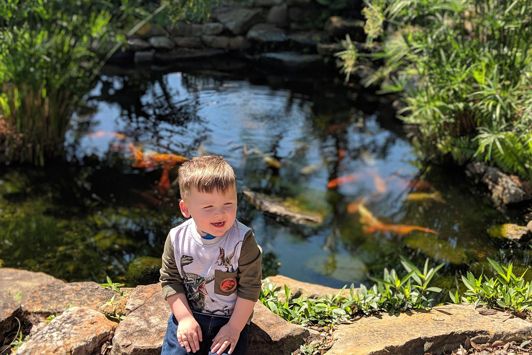 Kase smiles while sitting on some large rocks in the sun. A koi pond filled with fish is behind him.