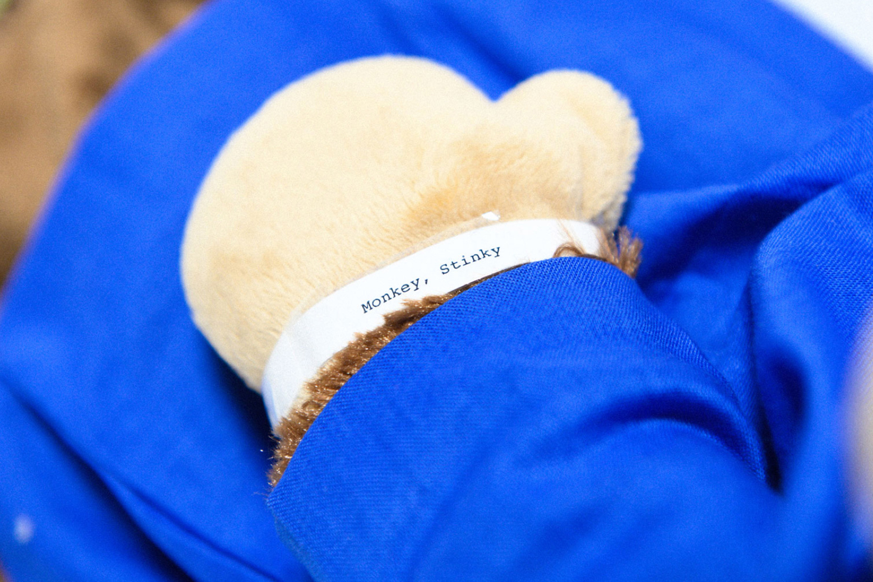 Stinky Monkey's hospital wrist band around his wrist with his name printed on it.
