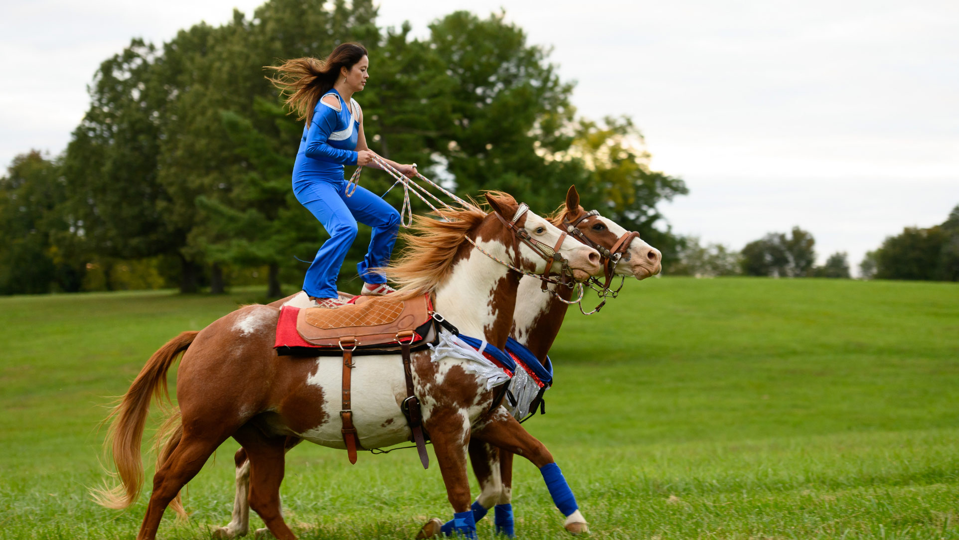 Miko stands atop two running horses, with a foot on each horse's saddle. They are running in a field.