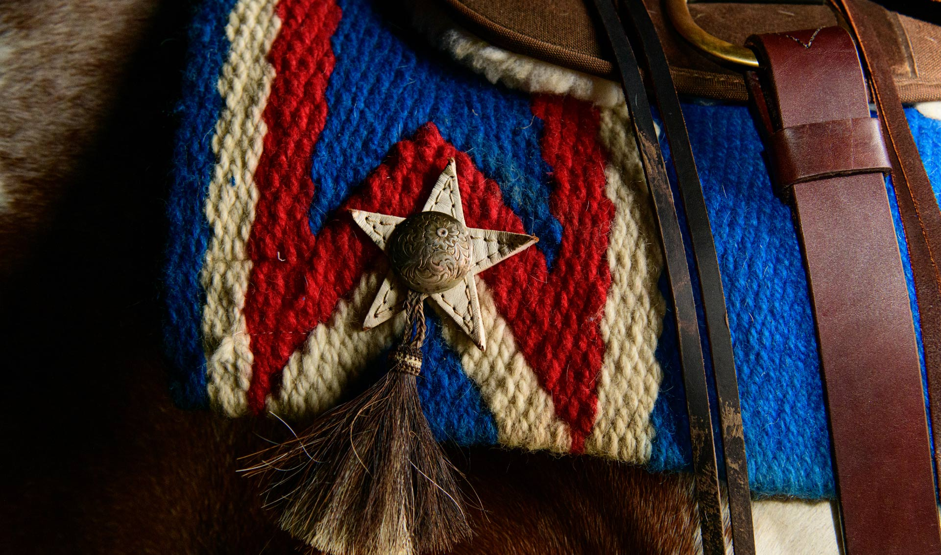 A close-up of a star decoration on a horses's saddle blanket.