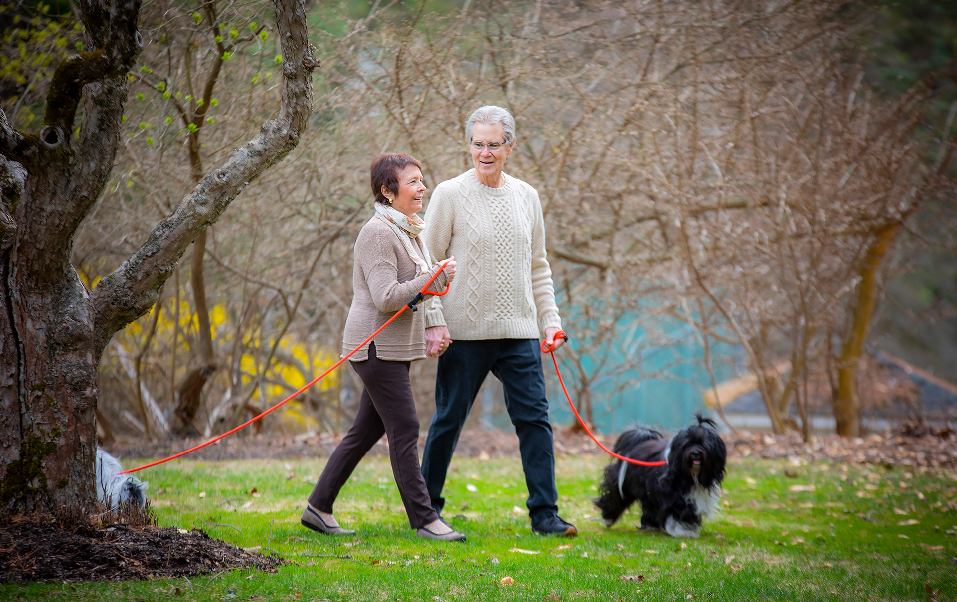A candid shot of Dr. Irwin and her husband smiling as they take a leisurely stroll through a park with their two dogs. She is wearing a beige sweater and patterned scarf, he is an older white man wearing glasses and a cream-colored knit sweater and blue slacks. Their fluffy black dog stands next to him as their white and black dog sniffs behind a tree.