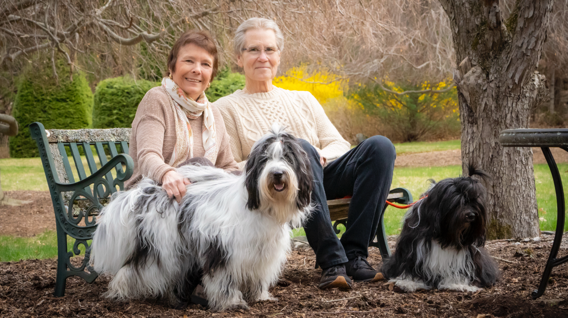 Dr. Irwin and her husband smile for the camera as they sit peacefully on a park bench alongside their slightly aloof dogs.