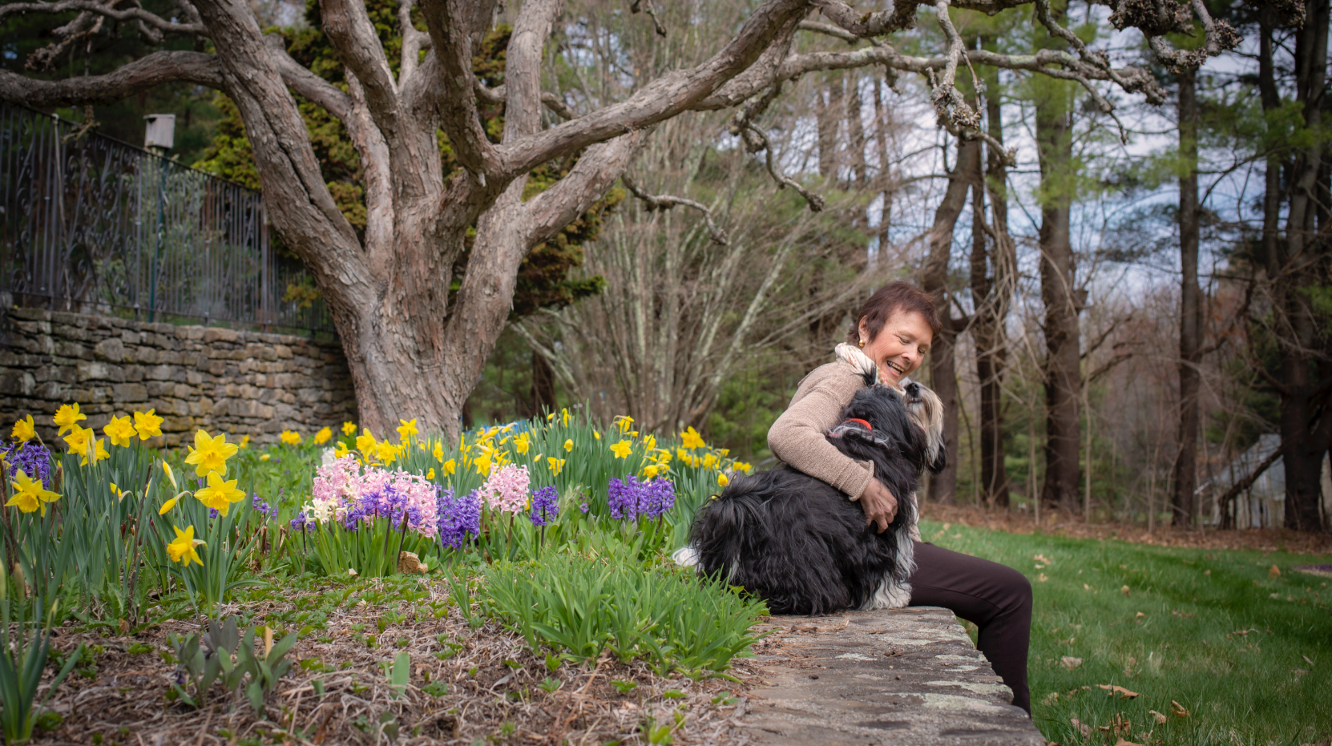 Dr. Irwin sits on a small stone wall and laughs as her Tibetan Terriers cuddle up to her, with her arms around them, one dog on each side of her.
